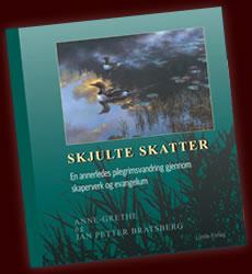 Skjulte skatter - bilde av boka