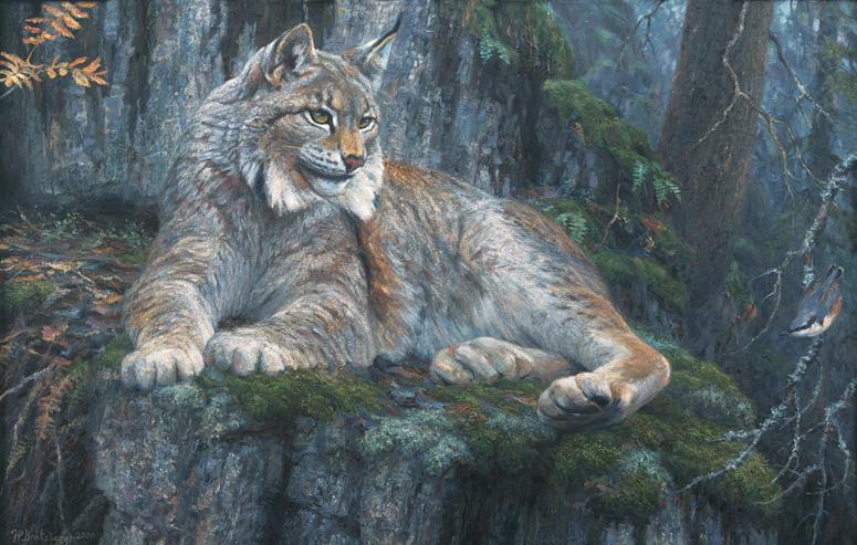 Truet fauna 7 - Jan Petter Bratsberg